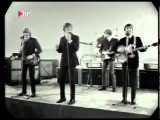 Herman's Hermits - No milk today Live 1966