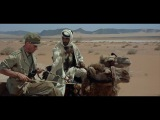 Desert Travel Scene - Lawrence of Arabia - HD