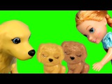 Puppies ! Elsa &amp Anna toddlers dog at the Pet VET - Sick  Animal doctor clinic