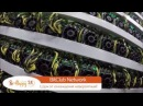 Скрытая сьемка майнинговой фермы BitClub Network в Исландии ¦ BeHappy24