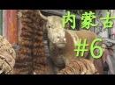 ዦ 10 ዣ Монгольский кумыс Прогулки по рынку Ч1