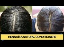 Onion Juice and Henna for reversing Grey Hair | HENNA iS A NATURAL CONDITIONERS