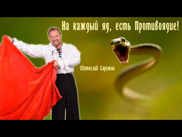 яд и противоядие Святослав Саражин