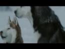 Найтвиш клип на фильм Белый плен