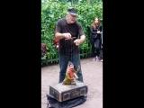 Вот такие величайшие артисты сегодня развлекали публику в Летнем саду! Максим Покровский