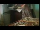 Затоваренная бочкотара(фильм,снятый в г.Каргополь)