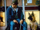 К9 Частные детективы/ Собачья работа-3 2002