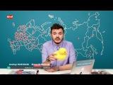 Штаб. Руслан Шаведдинов о кампании Навального. Эфир #036