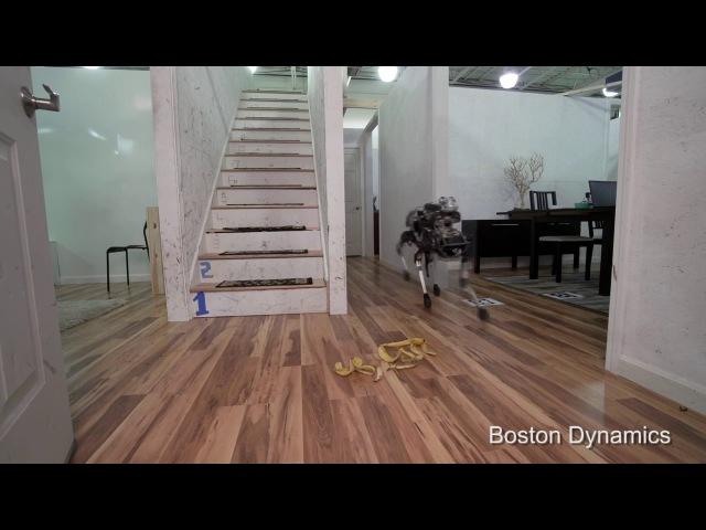 Robotic Dog Slips on a Banana Peel