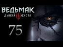 Ведьмак 3 прохождение игры на русском - Расследование ограбления [ 75]