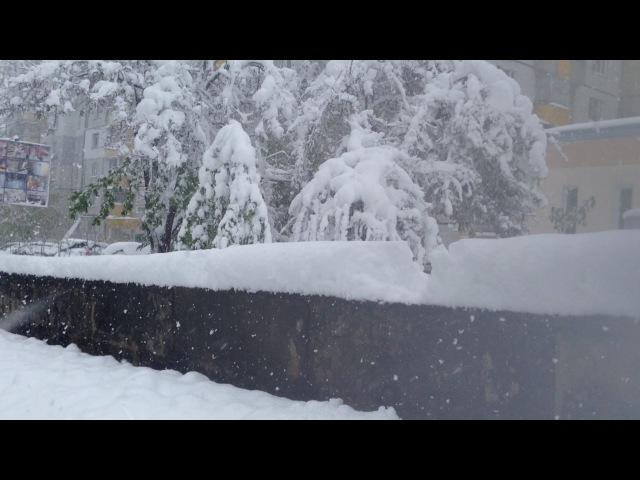 ВЫ такого не видели это УЖАСНЫЙ УЖАС ШОК в МОЛДОВЕ пошел сильный снег который повалил ДЕРЕВЬЯ!