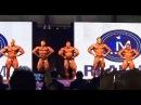 2016 Sheru Classic Dubai - Roelly Winklaar, Hadi Choopan, Alex Shabunya