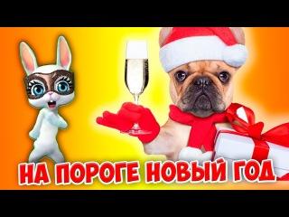 А на пороге Новый Год! Весёлая предновогодняя песенка  поздравление с новым годом 2018 ZOOBE  ...