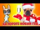 А на пороге Новый Год Весёлая песня переделка поздравление с новым годом 2018 ZOOBE Муз Зайка