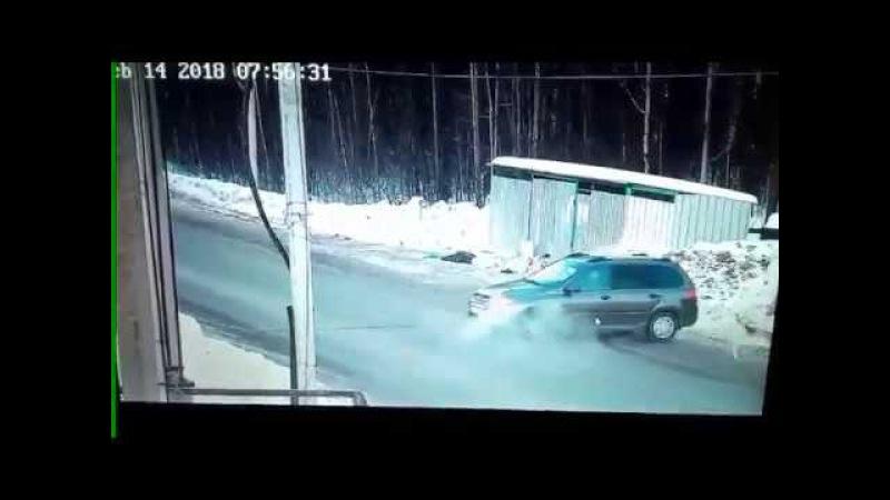 Водитель спас школьницу от стаи бездомных собак в Ижевске