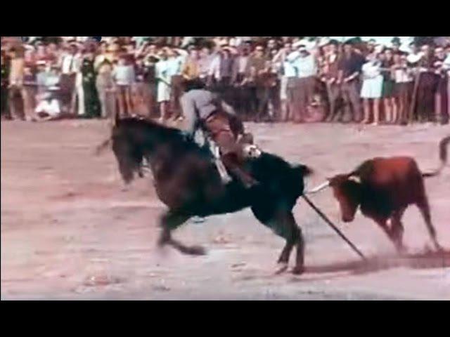 1968 Campeonato de Acoso y Derribo - Alba de Tormes (Salamanca) - Toro de lidia, toro bravo, Horses