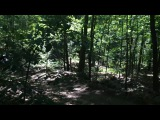 Giant Robot in the woods