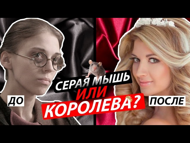 Серая мышь или королева? / Владимир Мунтян