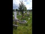 я сходила на могилу отца, а там чайки....
