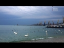 Краны феодосийского порта
