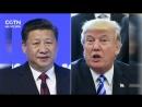 Си Цзиньпин и Трамп обсудили межгосударственные отношения и ситуацию на Корейском полуострове
