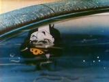 Ико - отважный жеребенок (Аргентина, 1981) полнометражный мультфильм, советский дубляж