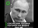 Сокурсник Путина погорел на «Путинке»