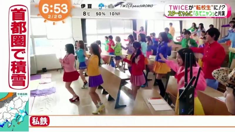 180202 Twice в программе Fuji TV @ Mezamashi TV.