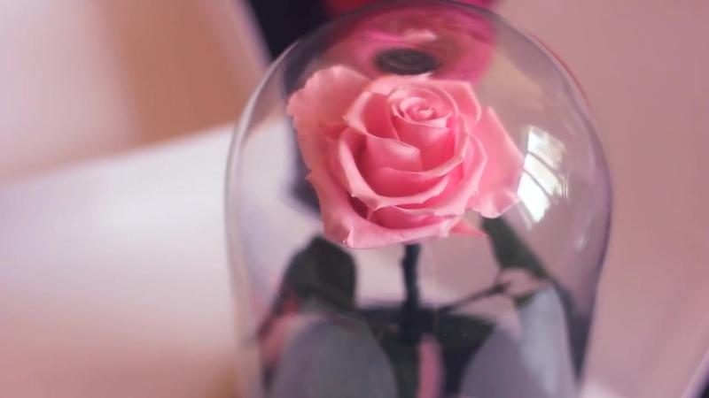 Уникальные живые розы в колбе Vertige