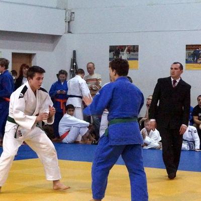 Judoistick