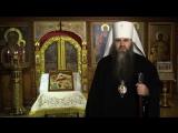 Поздравление с Рождеством митрополита Нижегородского и Арзамасского Георгия