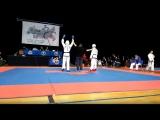 Чемпионат России по Taekwondo г. Москва