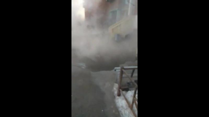 Утро туманное на Савушкина 137