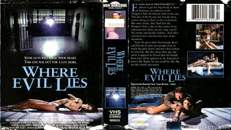 Там, где покоится зло / Where Evil Lies (1995) VHSRip