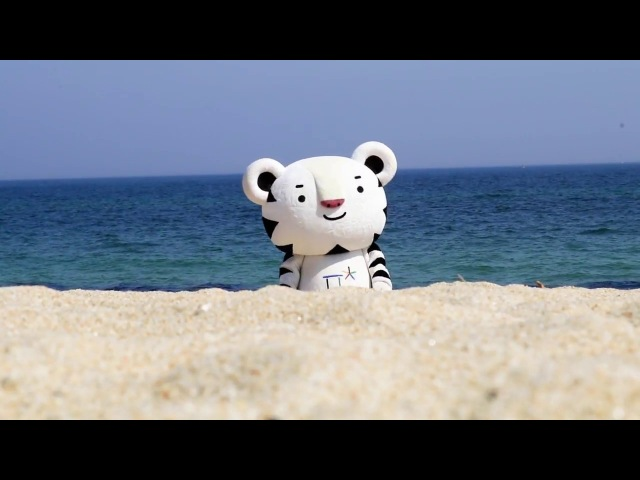 (KOR) 마스코트 이야기 13 The life of PyeongChang 2018 Mascot