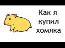 Как я купил хомячка Анимация 2018 Сергей Уэй