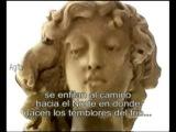 ELO Electric Light Orchestra Eldorado subtitulado castellano