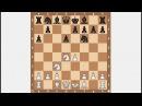 Шахматы для начинающих Лучшие дебюты на е4 Обучение шахматам