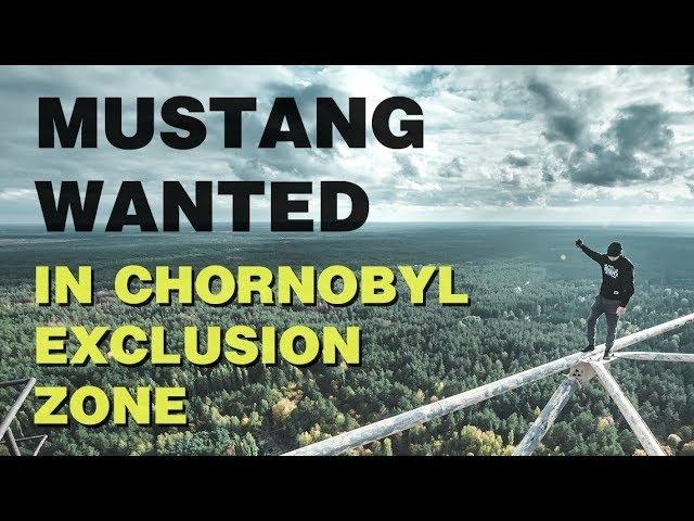 Mustang Wanted In Chornobyl Exclusion Zone (Duga) | Мустанг в Чернобыльской Зоне (ЗГРЛС