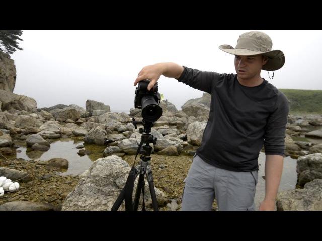 Правильный штатив (головка) для съемки панорам / пейзажей
