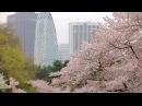 Япония страна сакуры и трудоголиков Мир наизнанку 1 серия 9 сезон