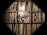 Эстрадно-Симфонический Оркестр Телевидения И Радио Грузии (1982)(Мелодия С60 18883 008) full album