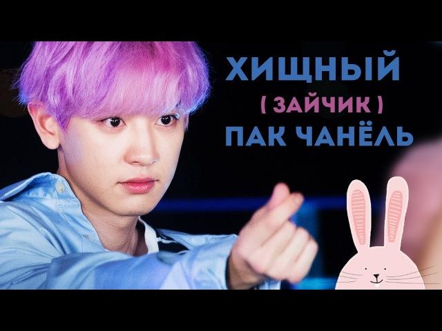 ХИЩНЫЙ (ЗАЙЧИК) ПАК ЧАНЁЛЬ! | CHANYEOL EXO | K-POP ARI RANG