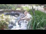 Лебедь. Лебеденок и ребенок дружба. Ugly duckling and my baby by Melbiz