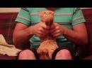Dubstep Cat