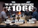 Joe Rogan Experience 1066 Mel Gibson Dr Neil Riordan