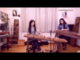 Stevie Wonder-Master Blaster Gayageum ver. by Luna
