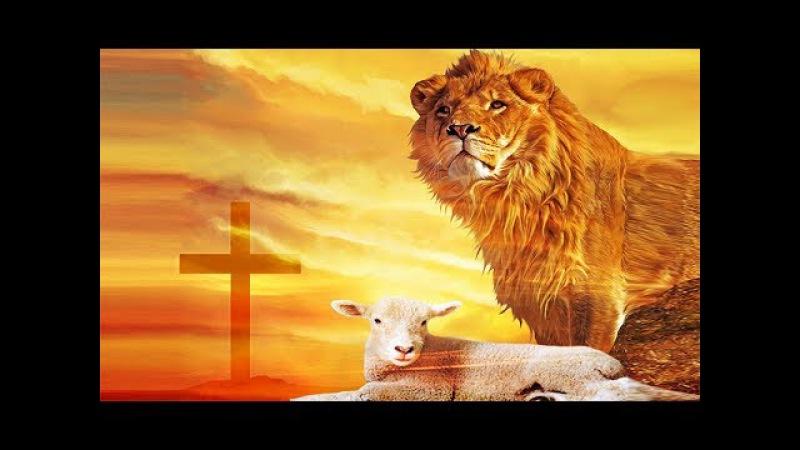 Тихие воды — Лев и агнец