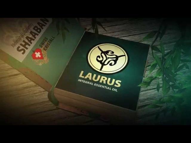 QuantOM Essential Oils: LAURUS (Laurel Bay Leaf)