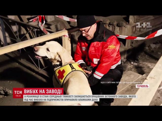 Вибух на бетонному заводі у Тернополі міг статися через несправне газове обладнання